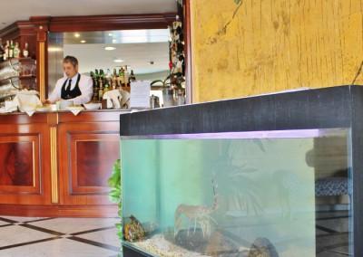 ristorante-pasqua-vicino-milano-5