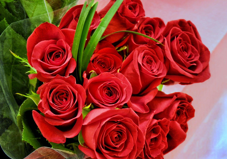 Днем, цветы фото открытки для любимой