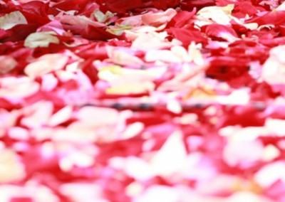 spa-petali-di-rosa-milano