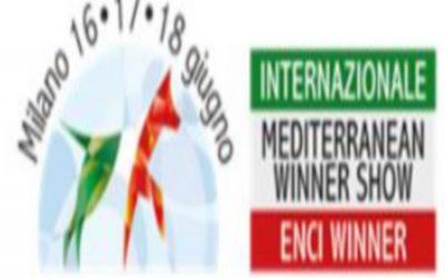 Offerta Hotel vicino Enci Winner Milano 2018